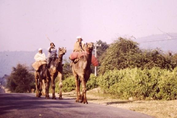 india-drive-3